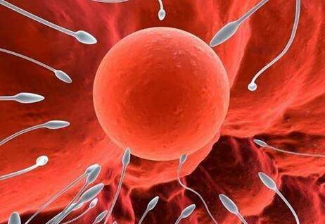 排卵期体温是多少,排卵期有什么症状反应?