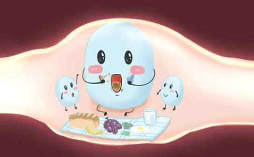 什么牌子的益生菌最好,益生菌的功效与作用是什么?